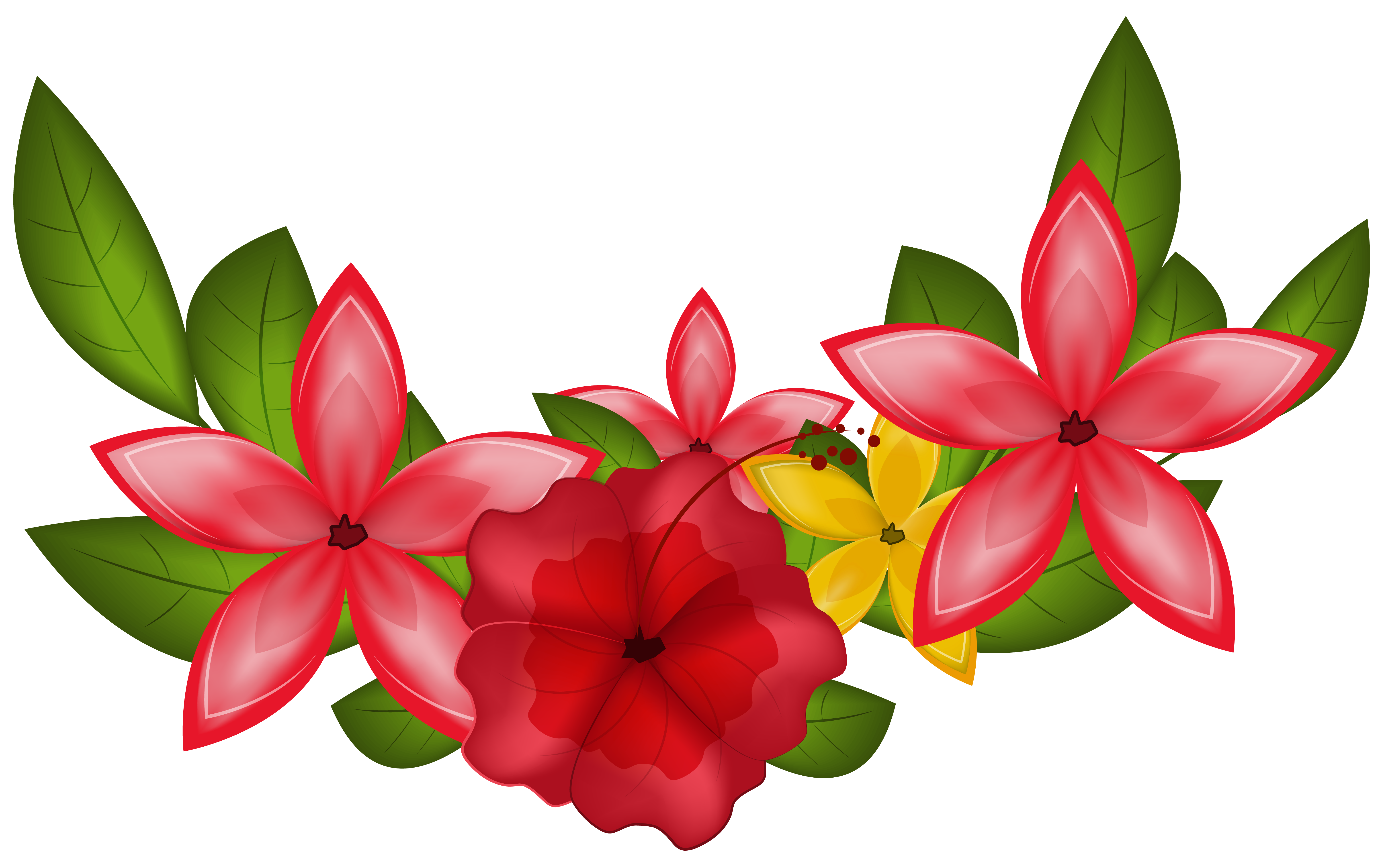 Floral clipart png. Exotic decoration image gallery