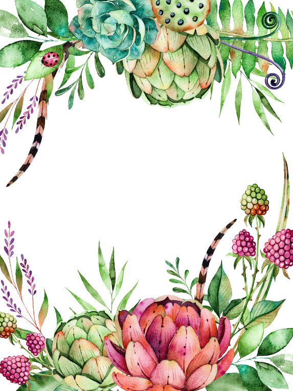 Floral clipart succulent. Flowers frame ftestickers report