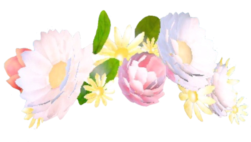 Floral crown png. Cover tutorials flower filter
