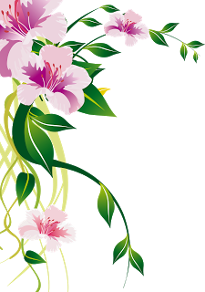 Floral flowers png. Pin by syed imran