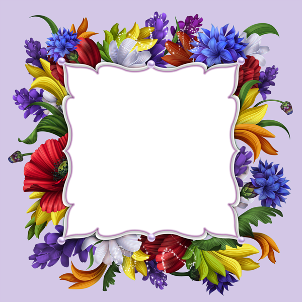 Floral frames png. Transparent purple frame gallery
