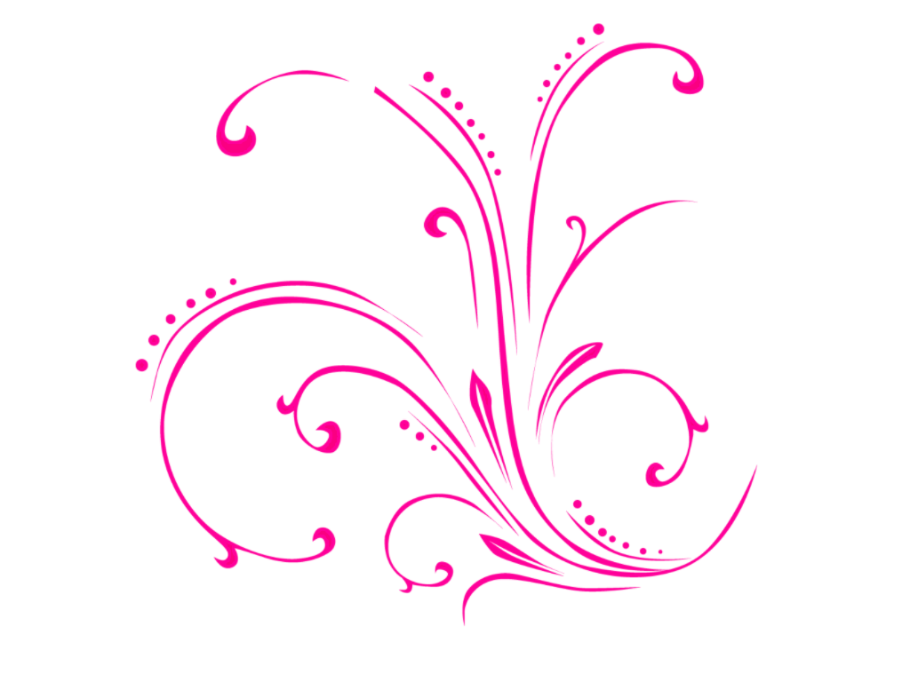 Floral png. Image with transparent background