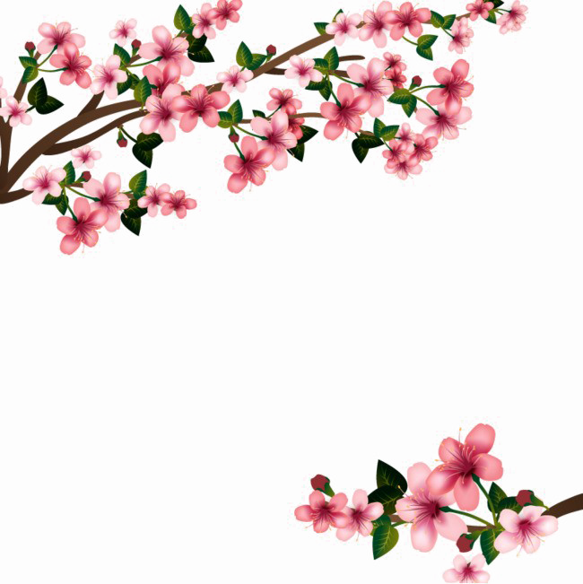 Images transparent free download. Flowers png vector library