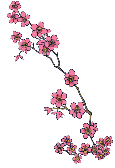 stem drawing cherry blossom