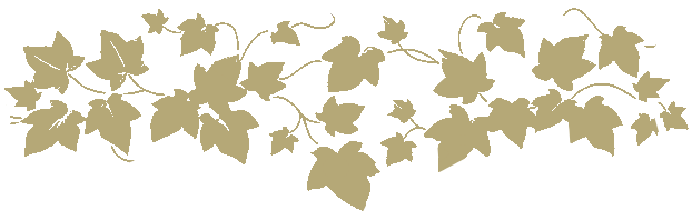 Floral vines png. Twigs weddings home