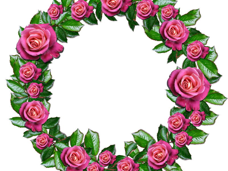 Flower wreath png. Floral with pink roses