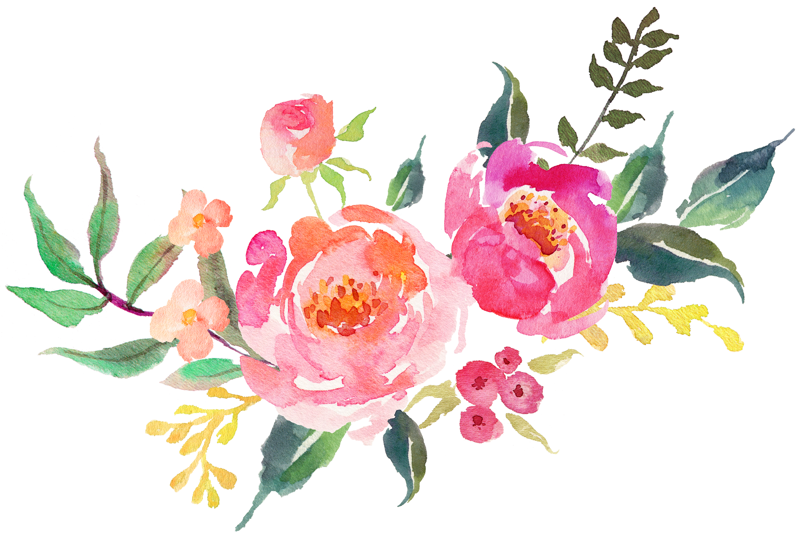 Rosas vector. Watercolour almohadones para sublimar