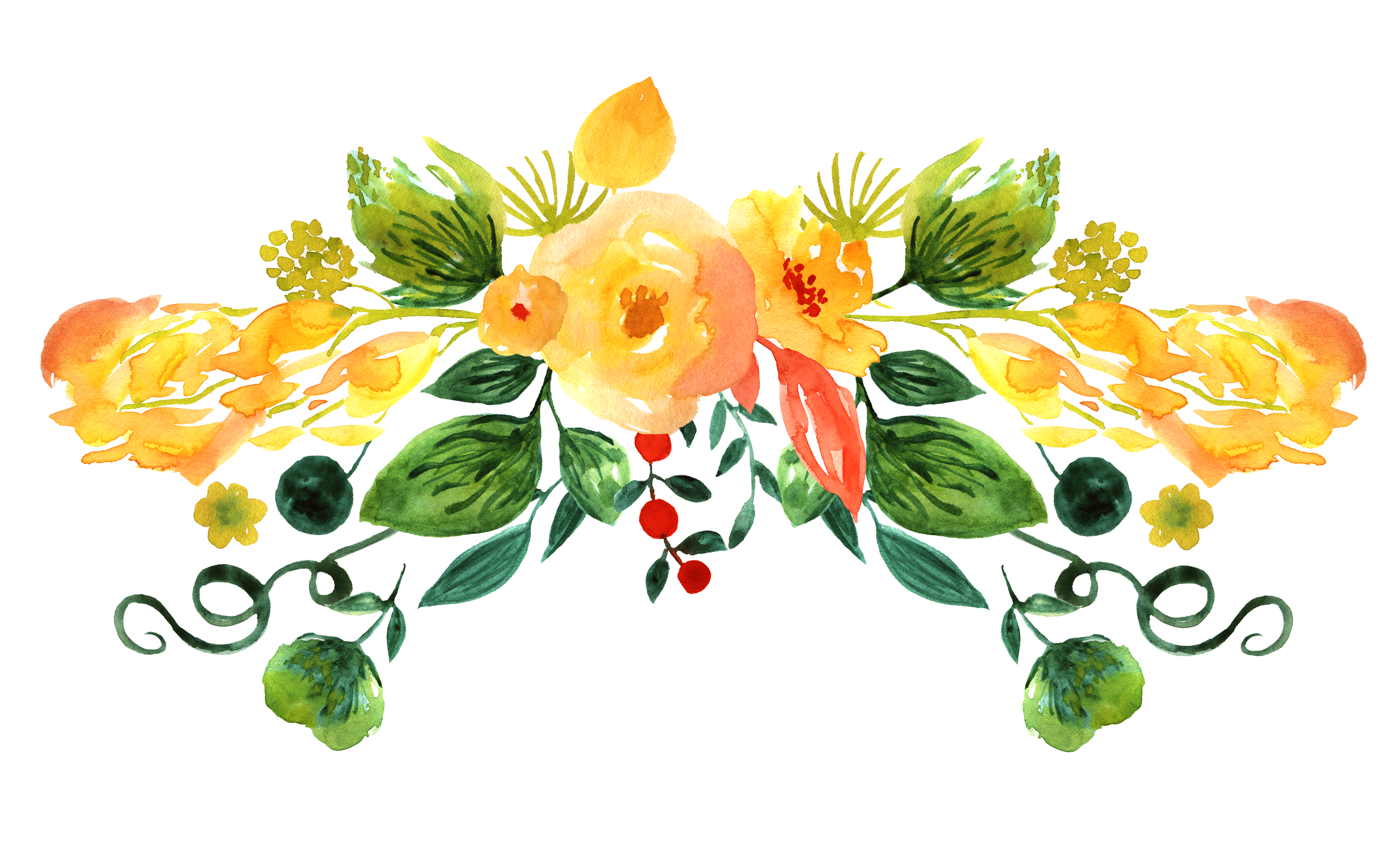 Floral design watercolor painting. Flores dibujo png jpg transparent