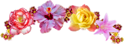 Image . Flores tumblr png image free library