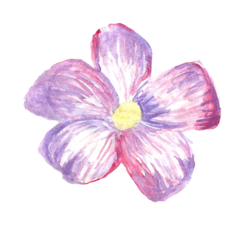 Flores tumblr png. I don t know