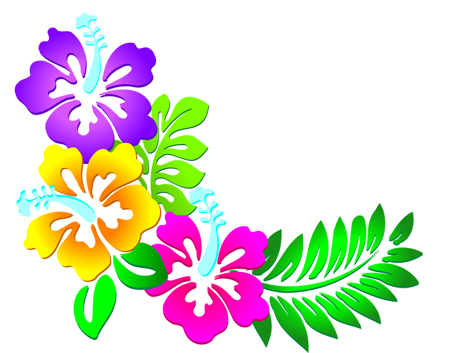Resultado de imagen imagenes. Flores vector png vector transparent download