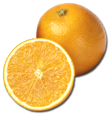 Florida orange png. Buyers guide to valencia