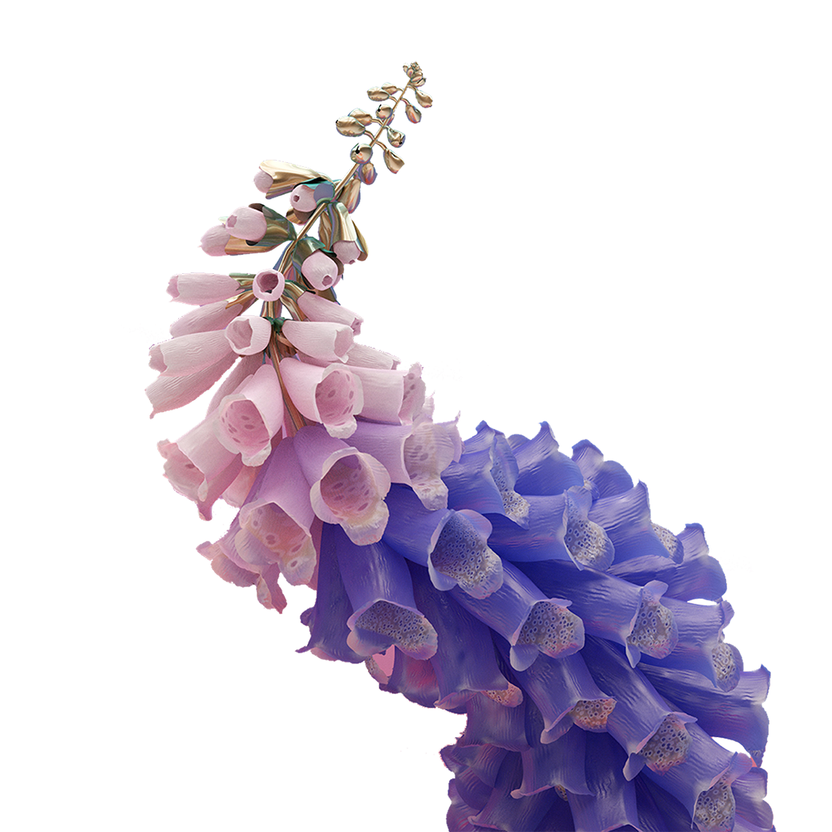 Flower aesthetic png. Images about
