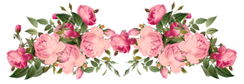 Aesthetic image . Flower overlays png clip transparent stock