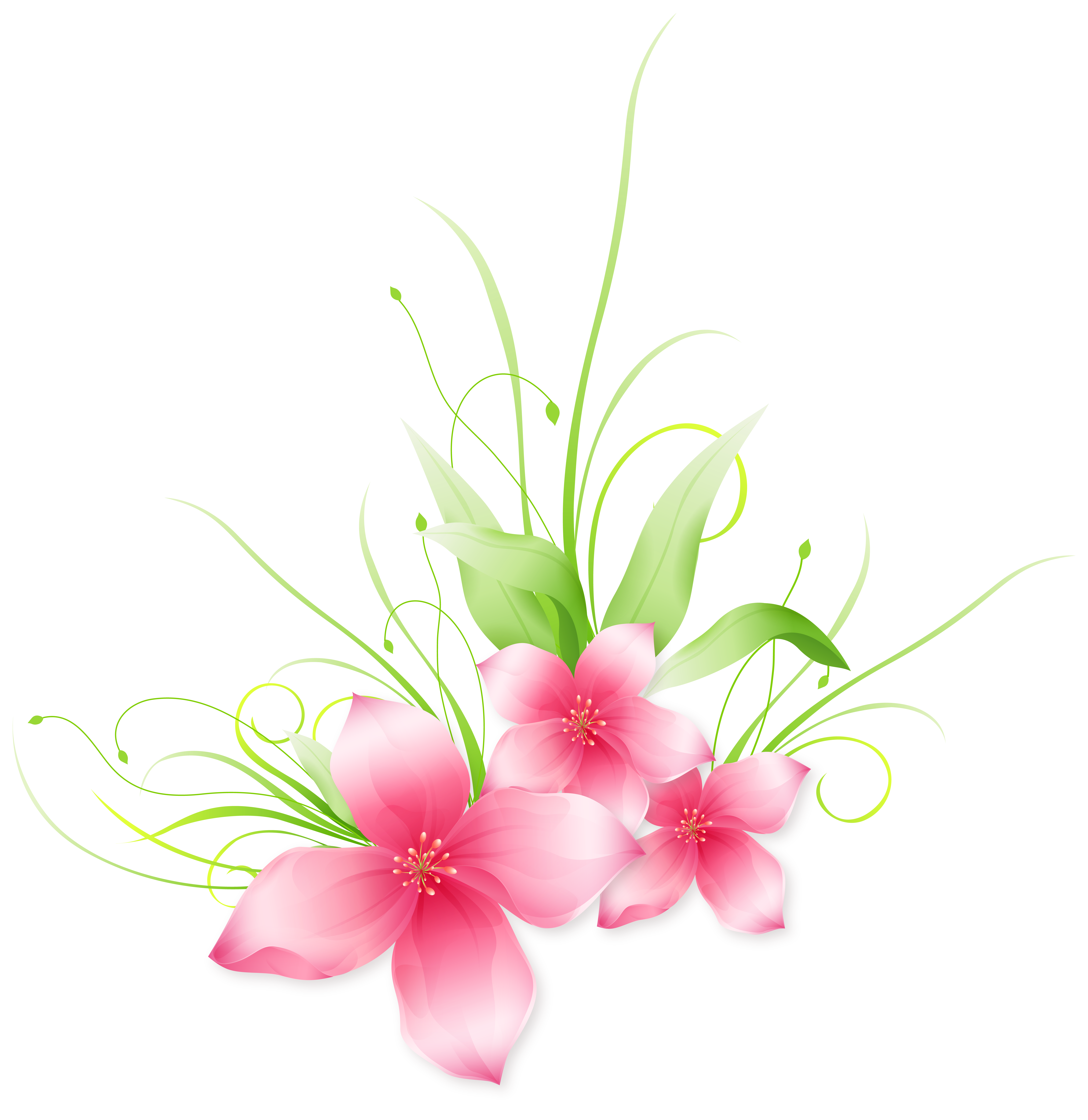 pink floral png