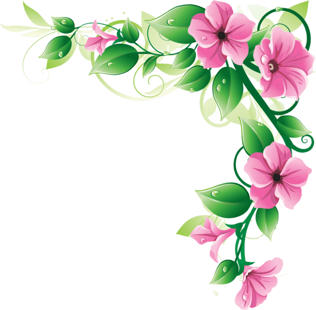 Flower corner design png. Flowers frame transparent stickpng