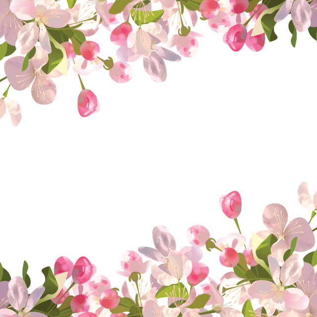 Spring flowers png. Realistic background and psd