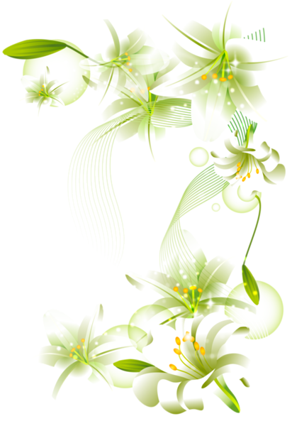 Flower background png. White flowers element free