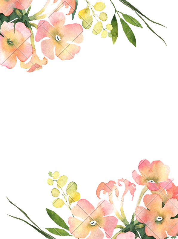 Flower background png images. Watercolor illustration for wedding