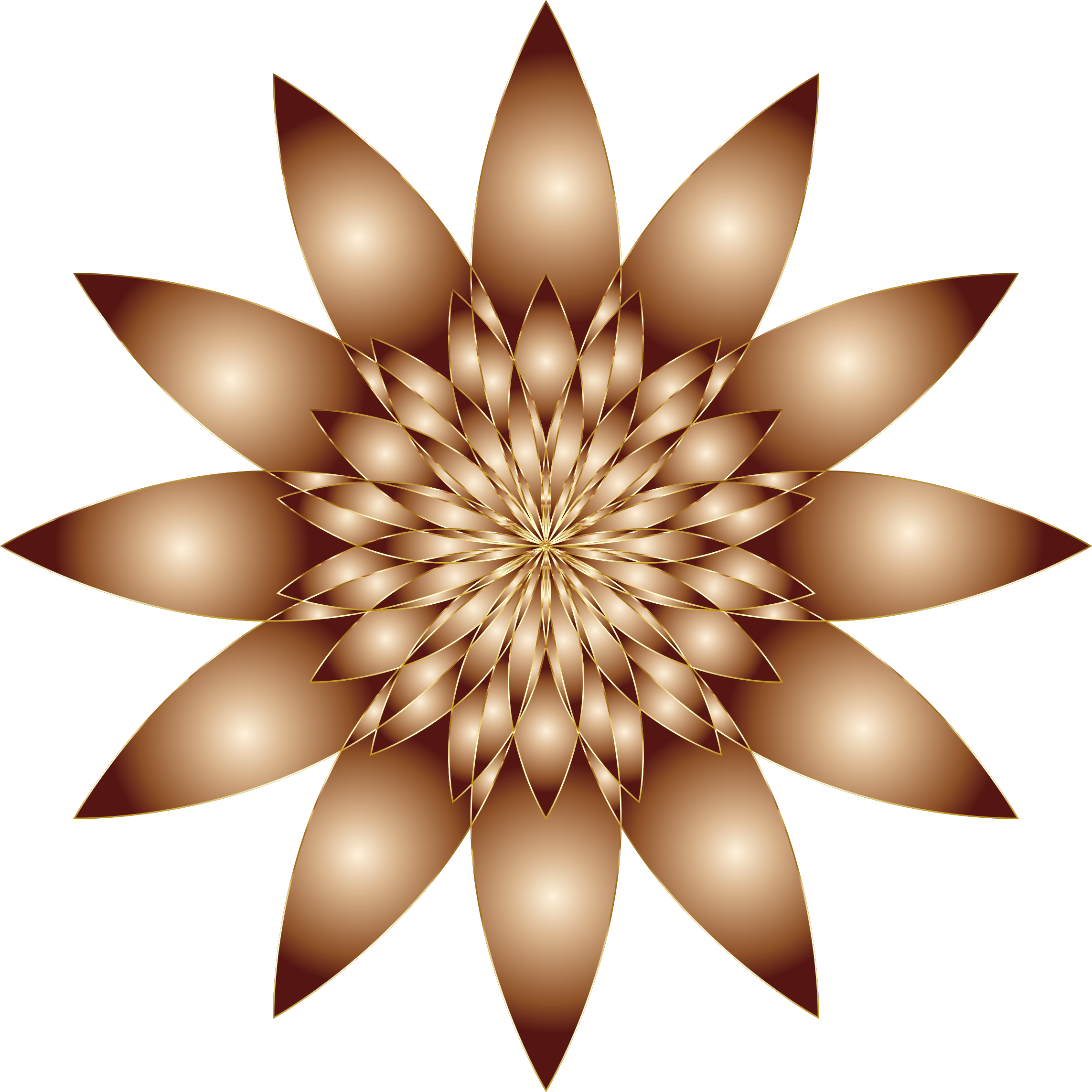Brown flower png. Chromatic no background icons
