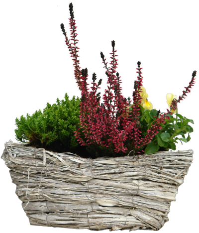 Flower basket png. Flowers by gd on