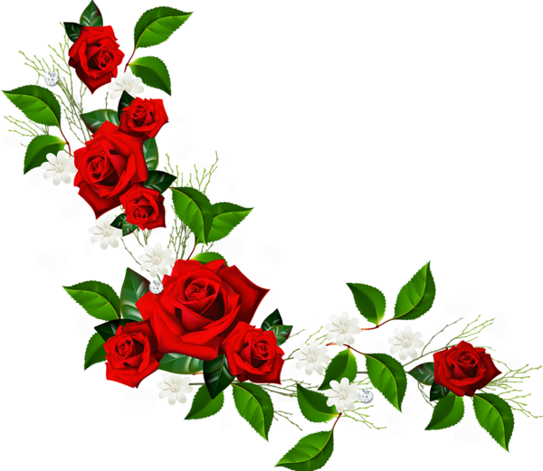 Flower bouquet border png. Decorative element with red
