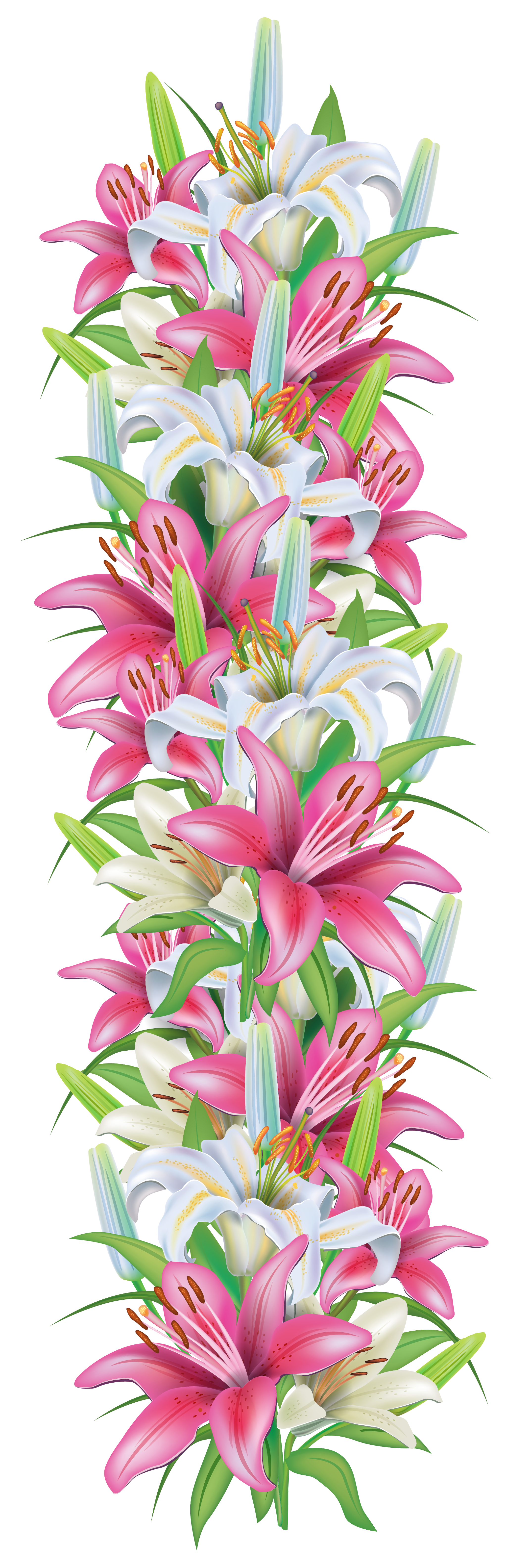 Flower bouquet border png. Pink and white lilies
