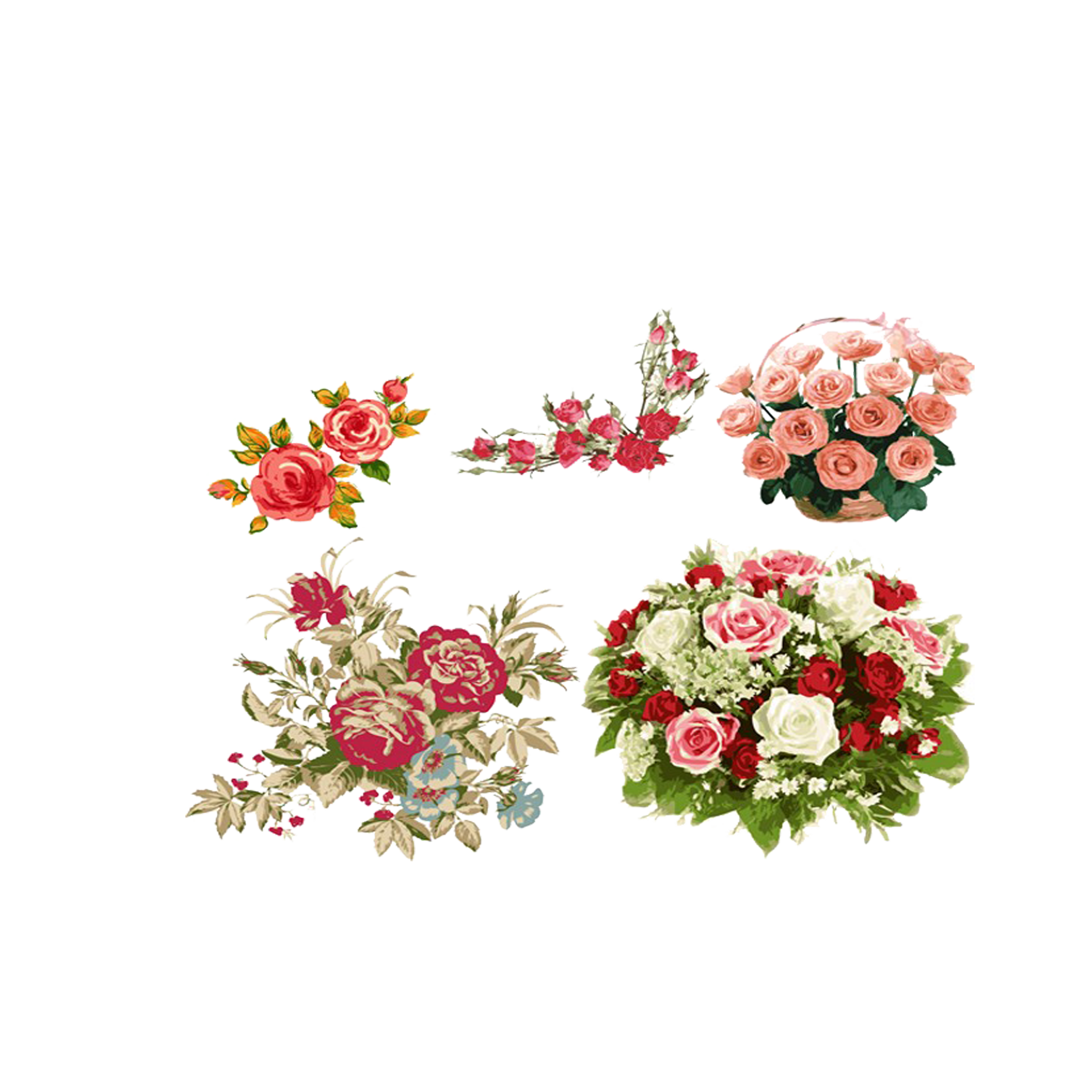 Flower bouquet drawing png. Beach rose painted delicate