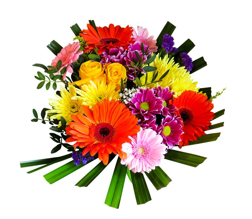 vector bouquet bunch flower