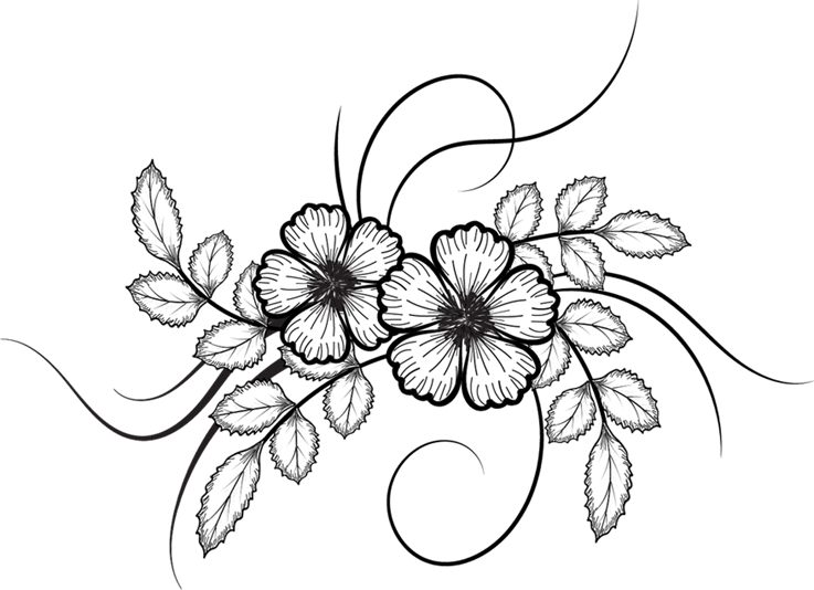 Vectorial drawing black and white. Flowers vector png pinterest