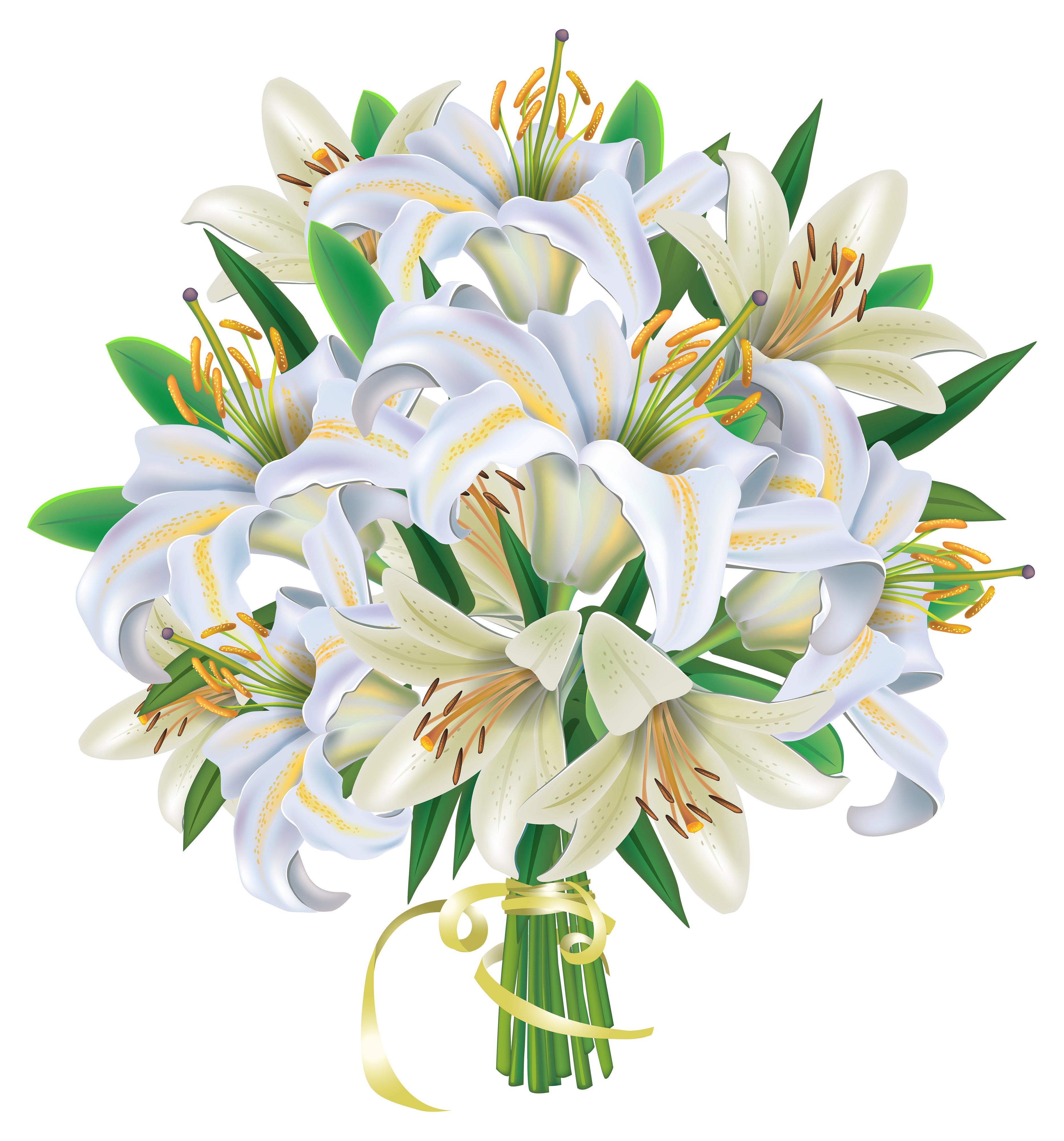 Lily transparent bouquet. White lilies flowers png