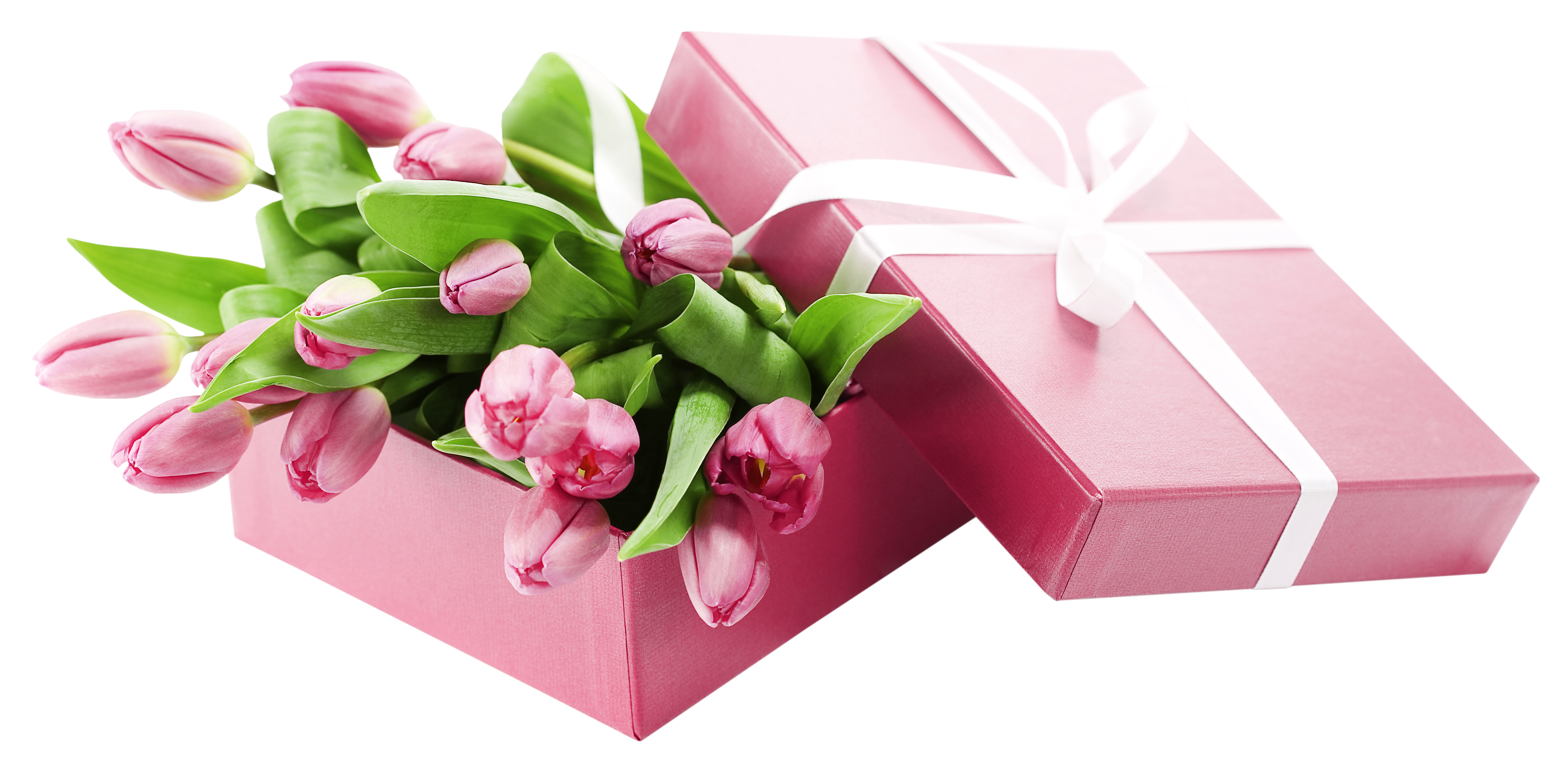 Flower box png. With pink tulips transparent