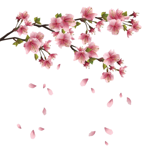 Flower branch png. Spring flowers branches transparent