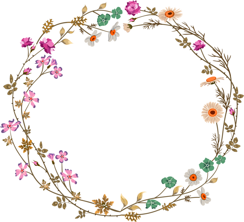 Flower circle png. Colorful simplicity vine border
