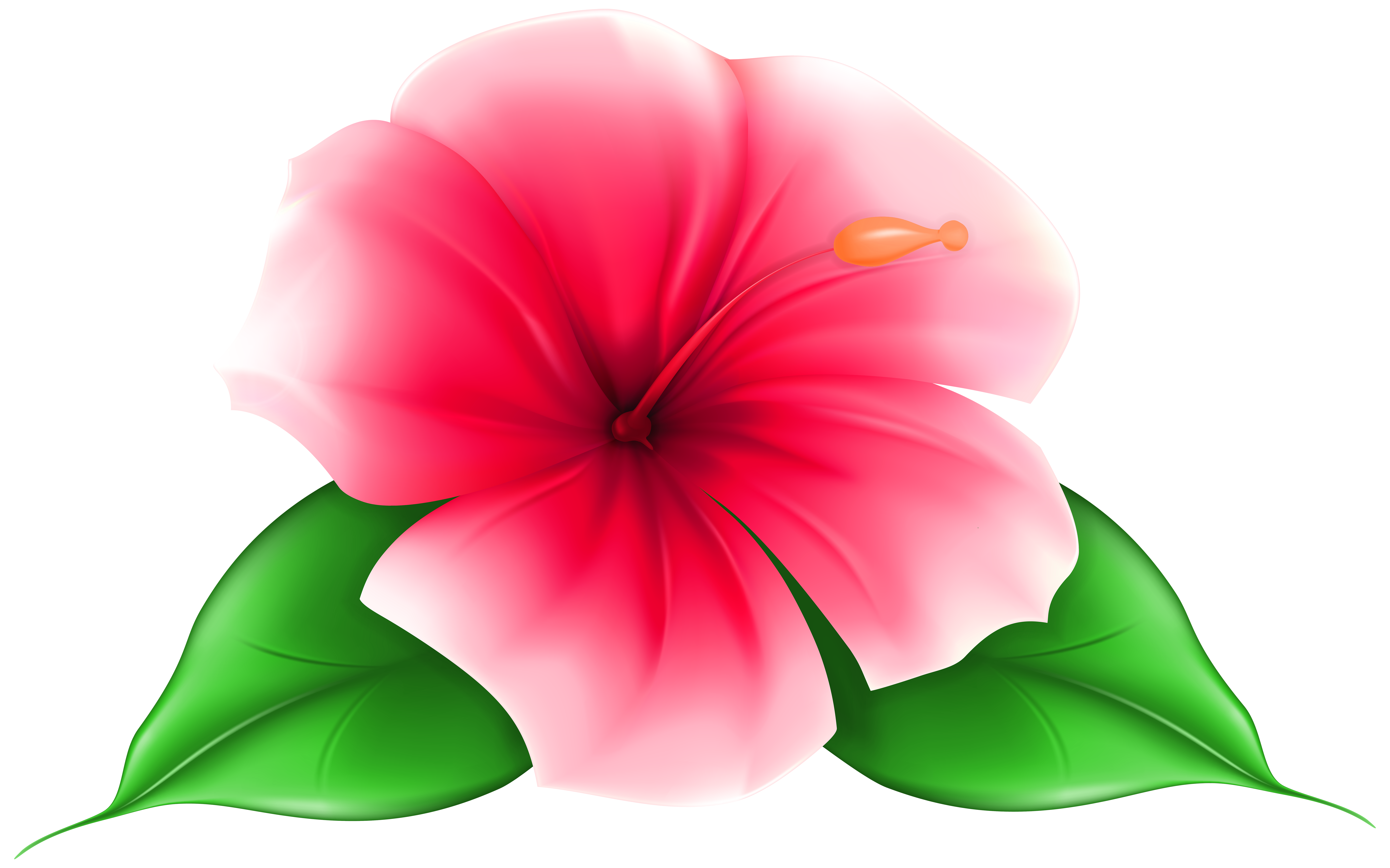 Flower clip art png. Exotic image gallery yopriceville