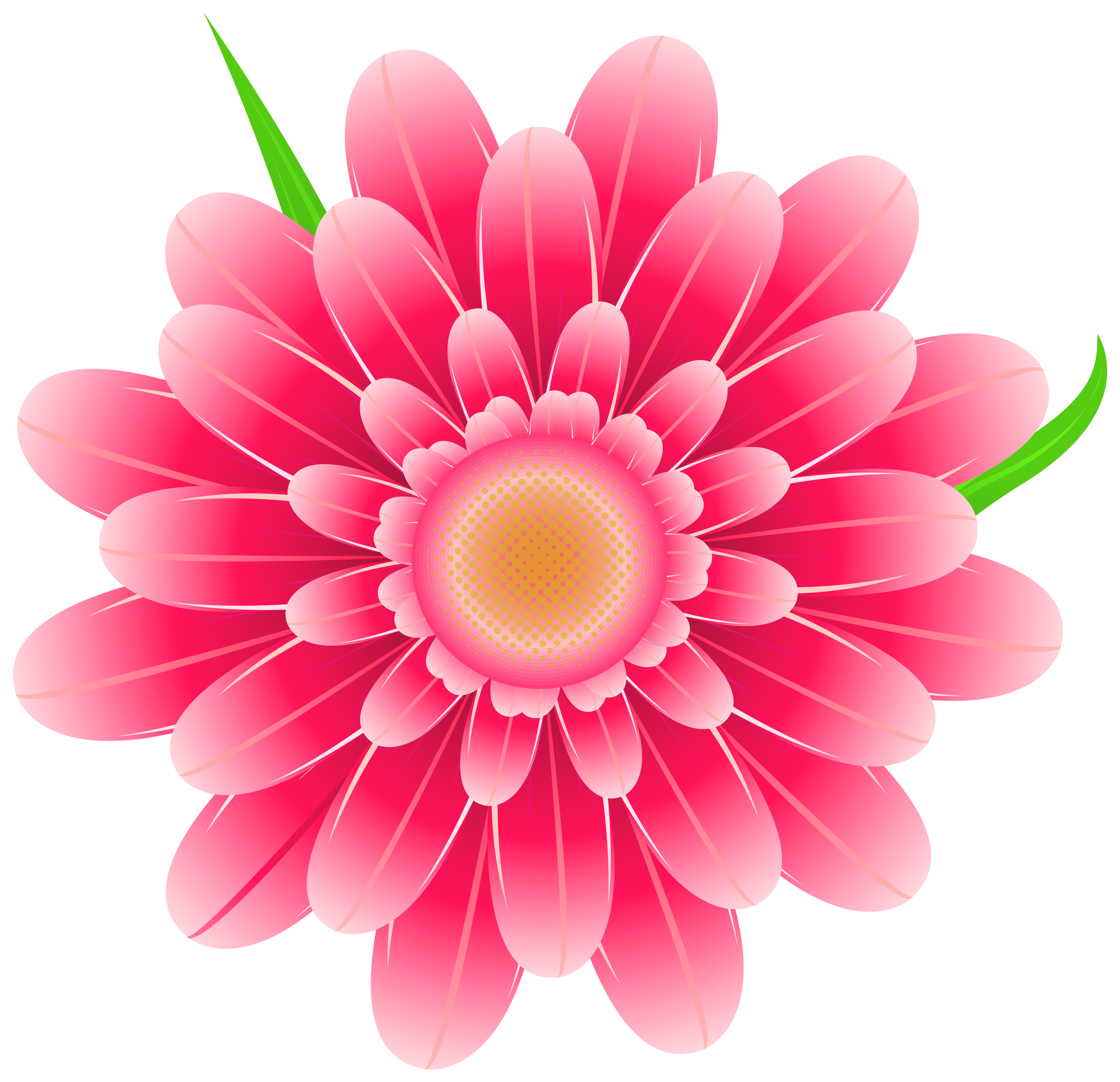 Pink flowers png. Transparent flower clipart image