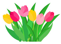 Free flowers clip art. Daffodil clipart tulip picture