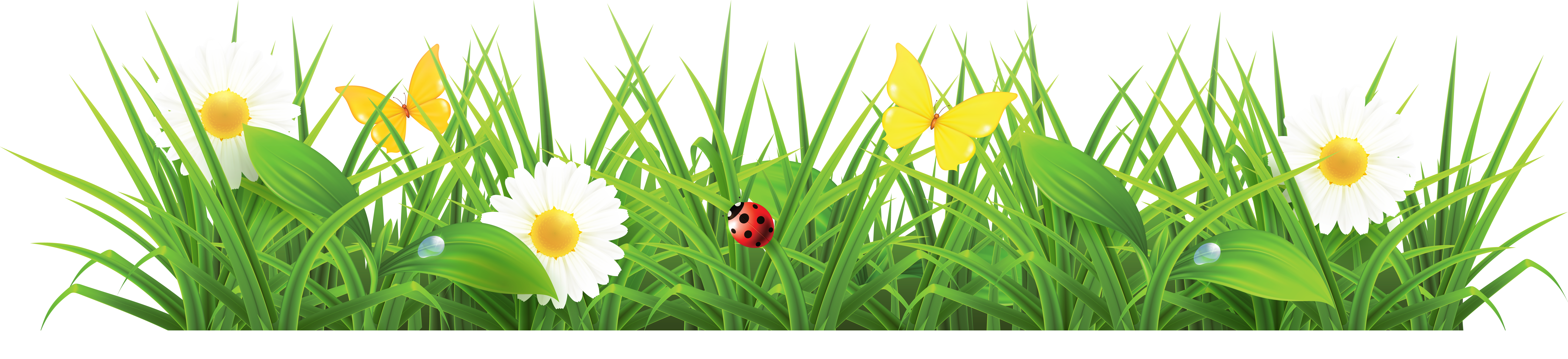 Grass clipart tulip. Free flower cliparts download