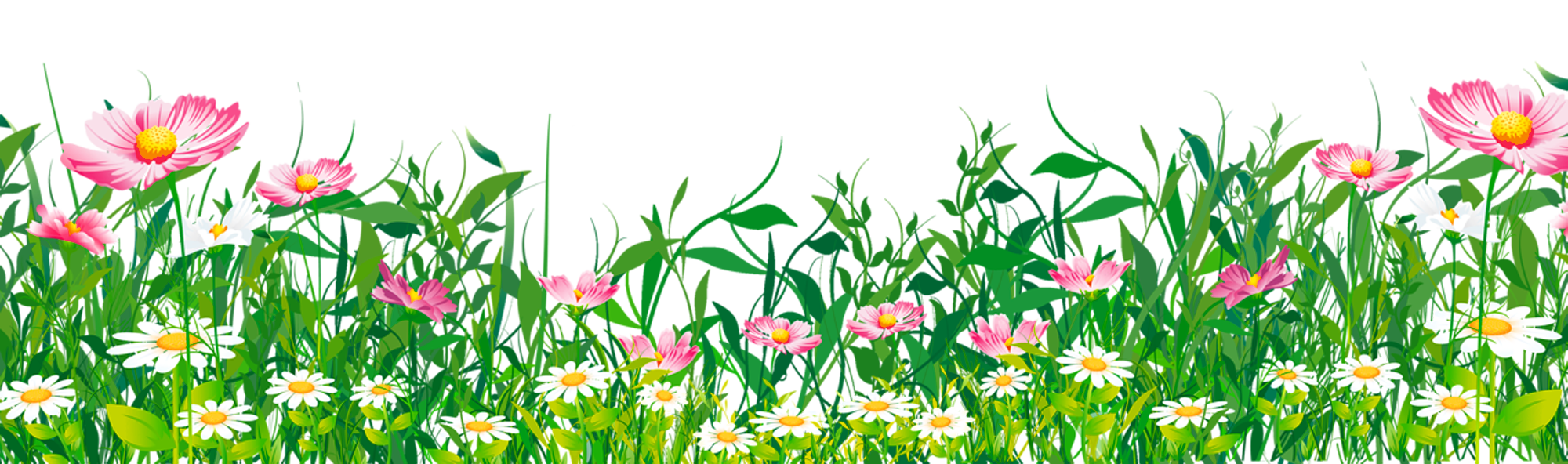 Grass flowers png. With clipart gallery yopriceville