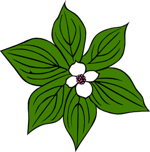 Wildflower clipart. Rainforest flowers