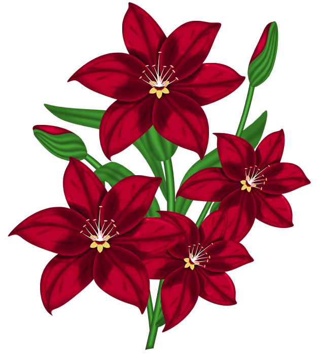 Flower clipart png. Nice red gallery yopriceville