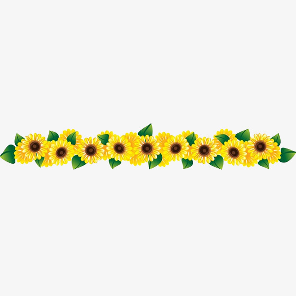 Row clipart sunflower. A of beautiful flowers