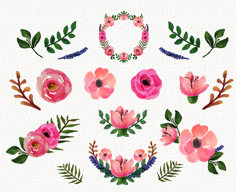 Free floral freebies peonies. Flower clipart watercolor png library download