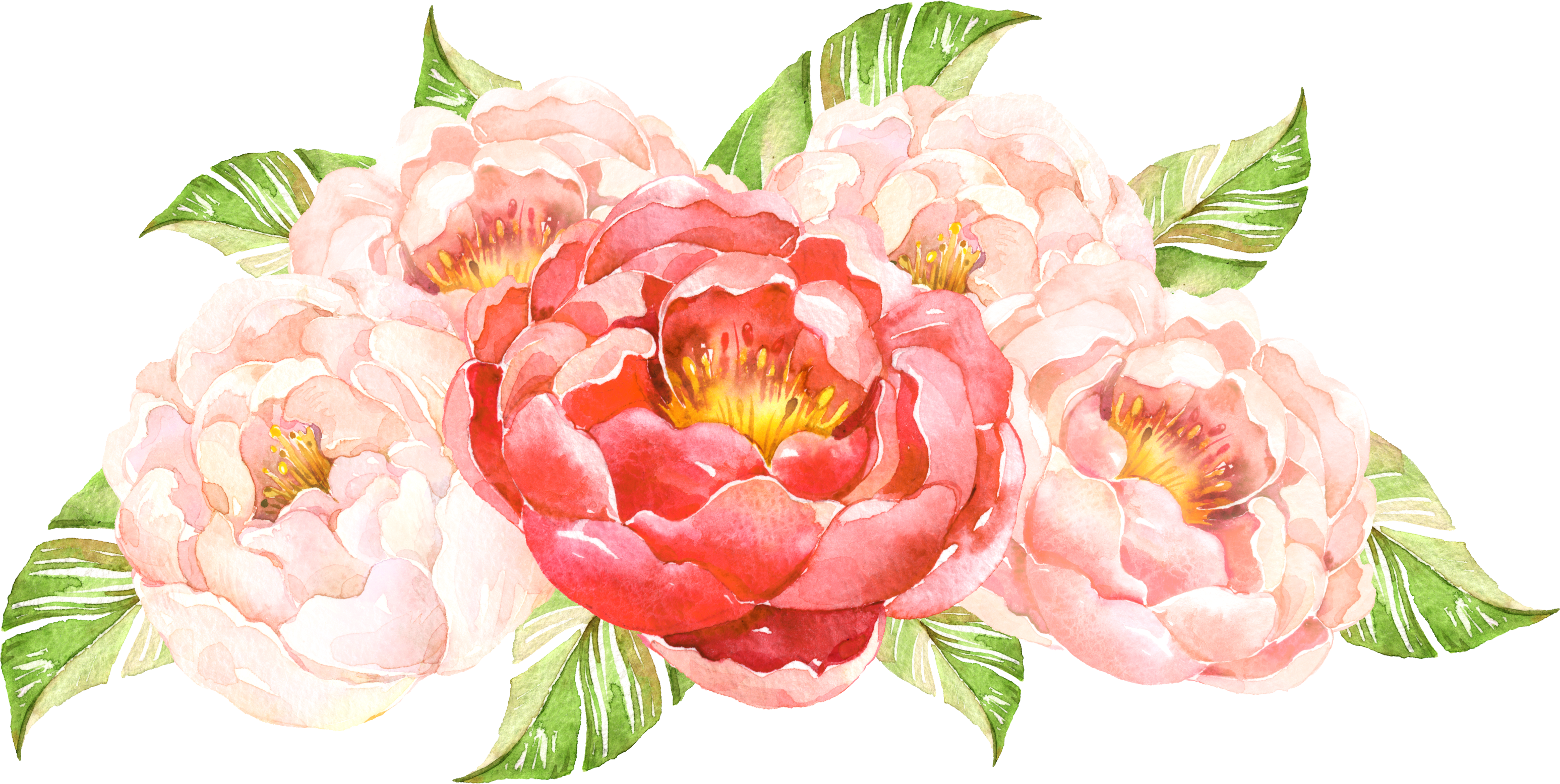 Flower cluster png. Hand painted transprent free