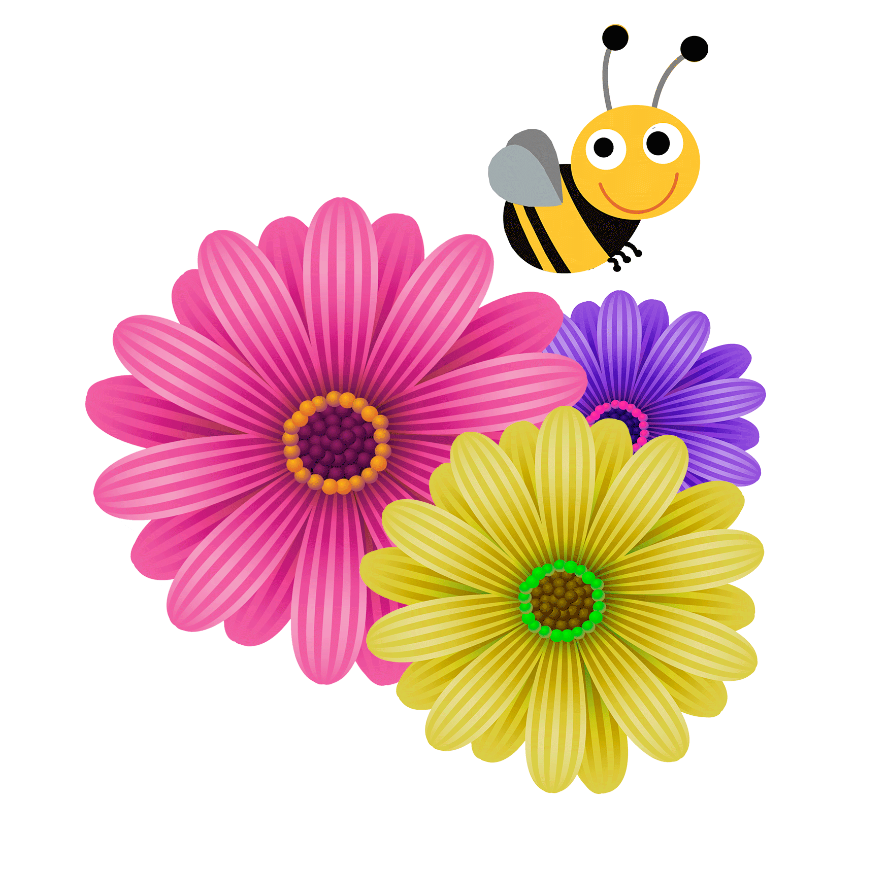 Flower corner design png. Floral google search flowers