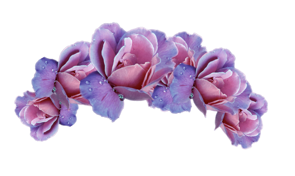 Floral crown png. Flower picture vector clipart