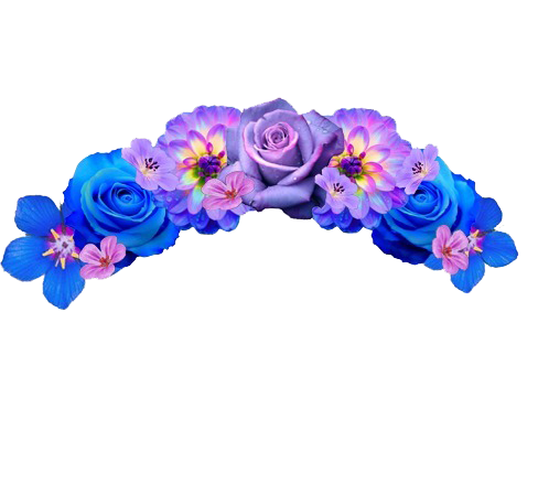 Flower crown transparent png. Snapchat images free download