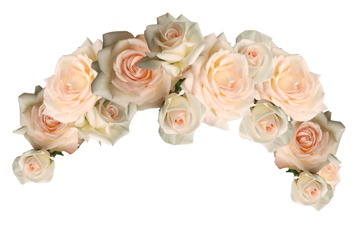 Gallery wallpaper hd choice. Flower crown png transparent svg free library