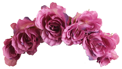 Flower crown png transparent. Tumblr crowntransparentmy edit