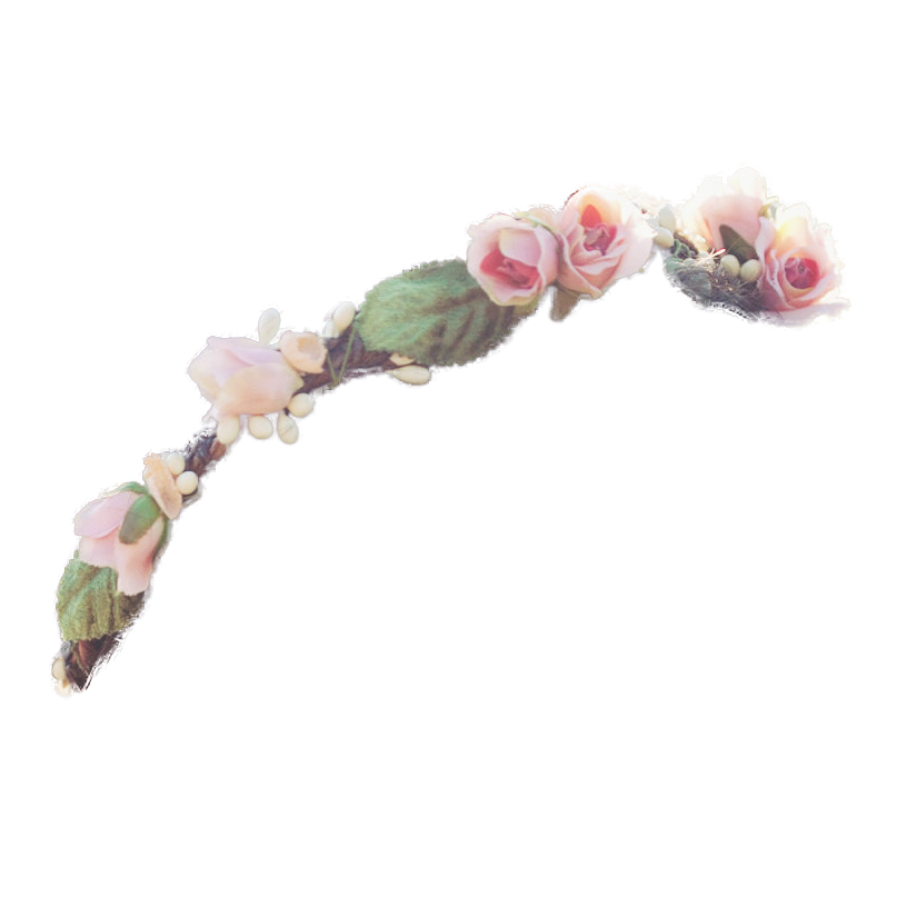 Flower crown png tumblr. Transparent google search youtubers